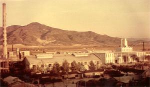 1961년