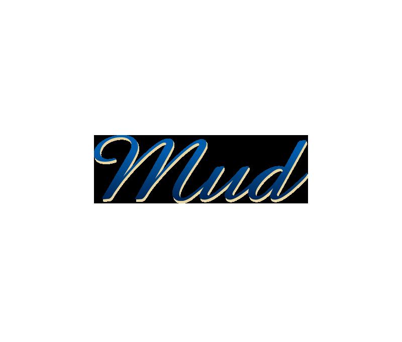 BI-mud